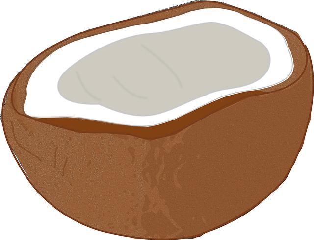 coconut-303358_640